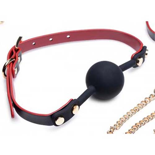 Black-and -Red-Bow Bondage-Set -Ball-Gag