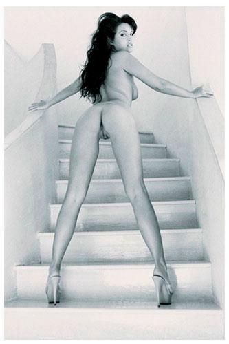 Dahlia On Staircase